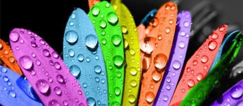 8 фактов об аэрозольных красках!